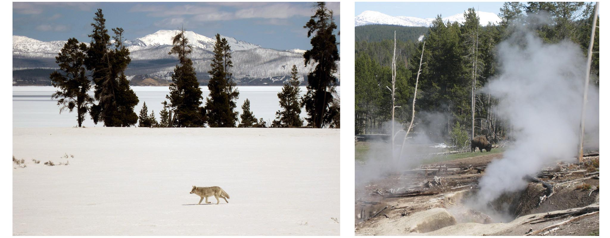 USA - Wyoming - Yellowstone National Park  //  Left:  Yellowstone Lake  Right:  Mud Volcano