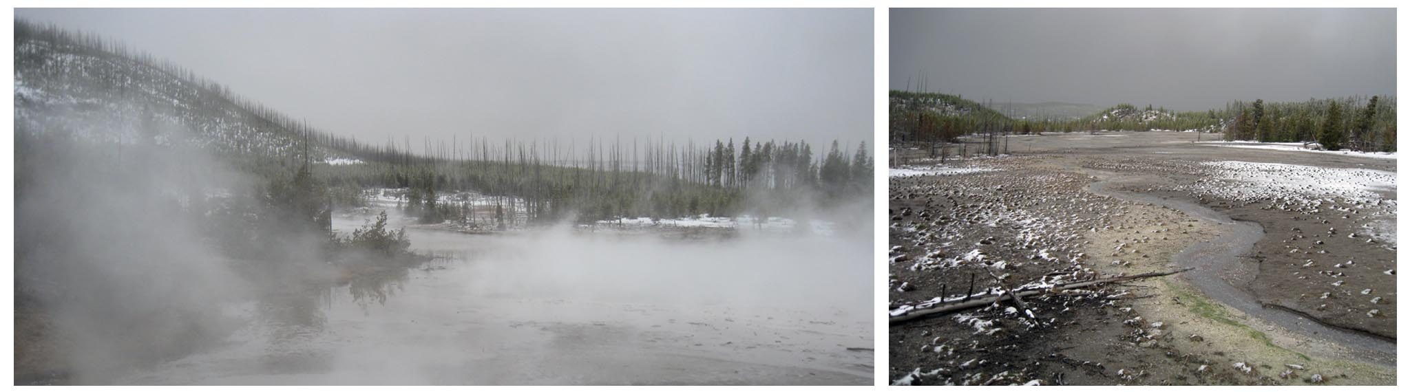 USA - Wyoming - Yellowstone - Norris // A gray day combines with steam on the Back Basin walk